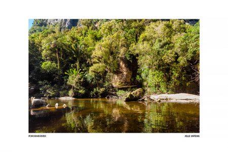 Pororari River – I (Luxe kaart 20x30cm.)